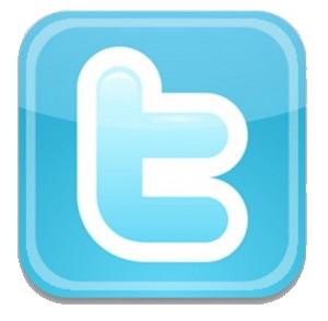 Twitter Logo on Think Like A Model
